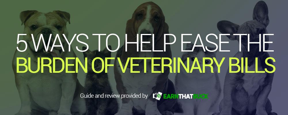 5 Ways to Help Ease the Burden of Veterinary Bills.jpg