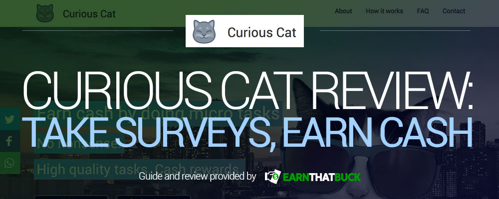 Curious Cat Review Take Surveys, Earn Cash.jpg