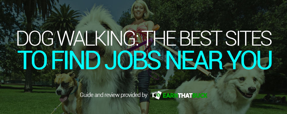 Dog-Walking-The-Best-Sites-to-Find-Jobs-Near-You.jpg