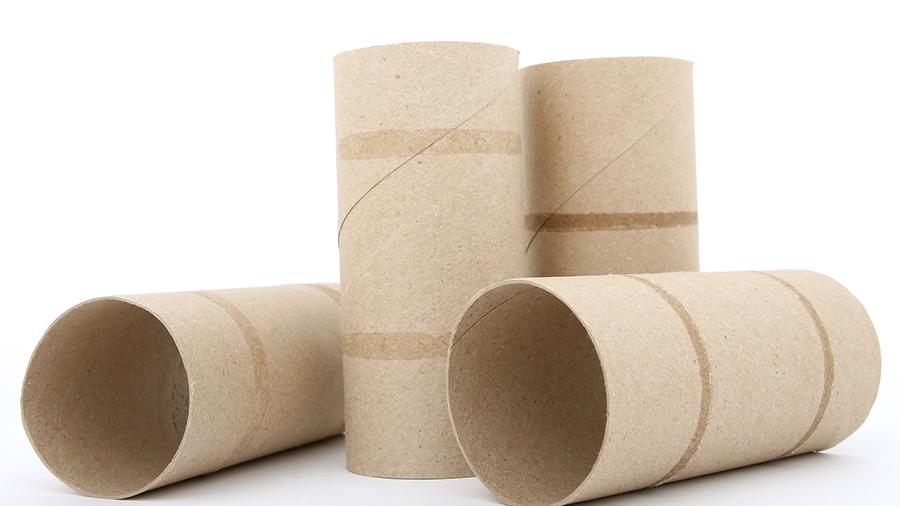 Empty Toilet Paper Tubes.jpg
