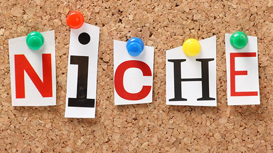 Find-Your-Niche.jpg