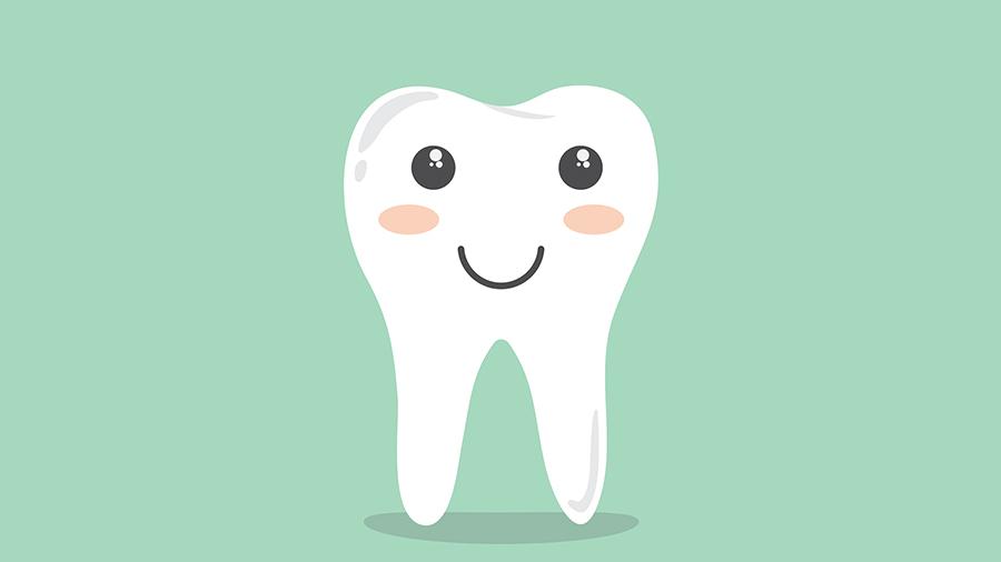 teeth and bones need calcium.jpg