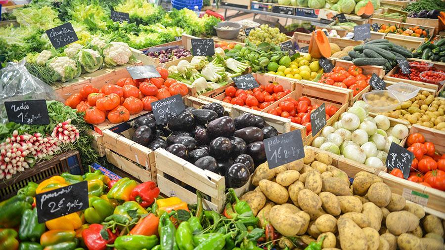 visit organic markets.jpg