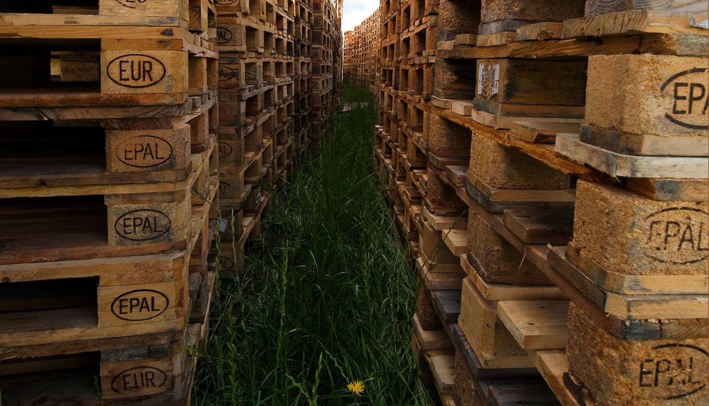 wood-pallet-inventory.jpg